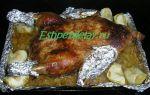 Утка с квашеной капустой в духовке, рецепт с фото