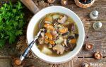 Грибной бульон: рецепты бульона из грибов
