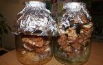 Шашлык из курицы в духовке в банке – рецепт с фото